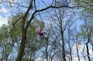 Świetlica socjoterapeutyczna - wspinaczka drzewna 26.04.2016