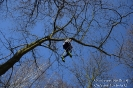 Zajęcia ze wspinaczki drzewnej - 27 marca 2017-9